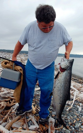 Salmon.2